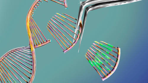P2PT49 CRISPR gene editing, conceptual computer illustration. The CRISPR-CAS9 protein is used to cut a DNA (deoxyribonucleic acid) molecule at a specific site. The DNA molecule can then be modified.|500x281.25